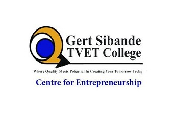 Gert Sibande TVET College participates in ministerial 'Decade of the Artisan' promotion
