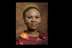 Minister of small business development opens entrepreneurship rapid incubator facility