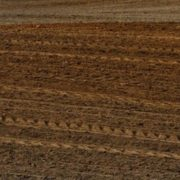 Land restitution not a complete failure, but problems persist