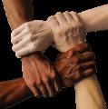 Diverse teams drive better outcomes