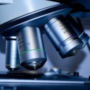 UKZN Scientist Scoops international Award
