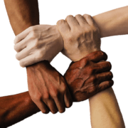UKZN launches Intern Mentorship Programme