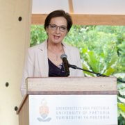 Prof Stephanie Burton marks a milestone as UP's Vice-Principal of Research