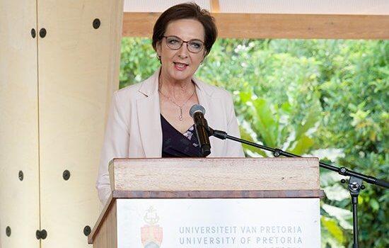 Prof Stephanie Burton marks a milestone as UP's Vice-Principal of Research